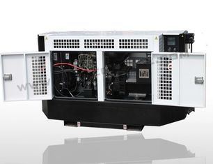 China Carrier Type 30kva 60Hz Silent Diesel Generator IP23 Protection Class supplier