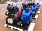 China Air Cooled Diesel Engine Fire Pump 500GPM 30hp 7 Bar Pressure Hydrants Coupling company